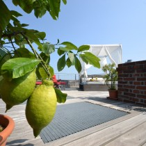 Dachgeschosswohnung im Wenckebach-Kiez